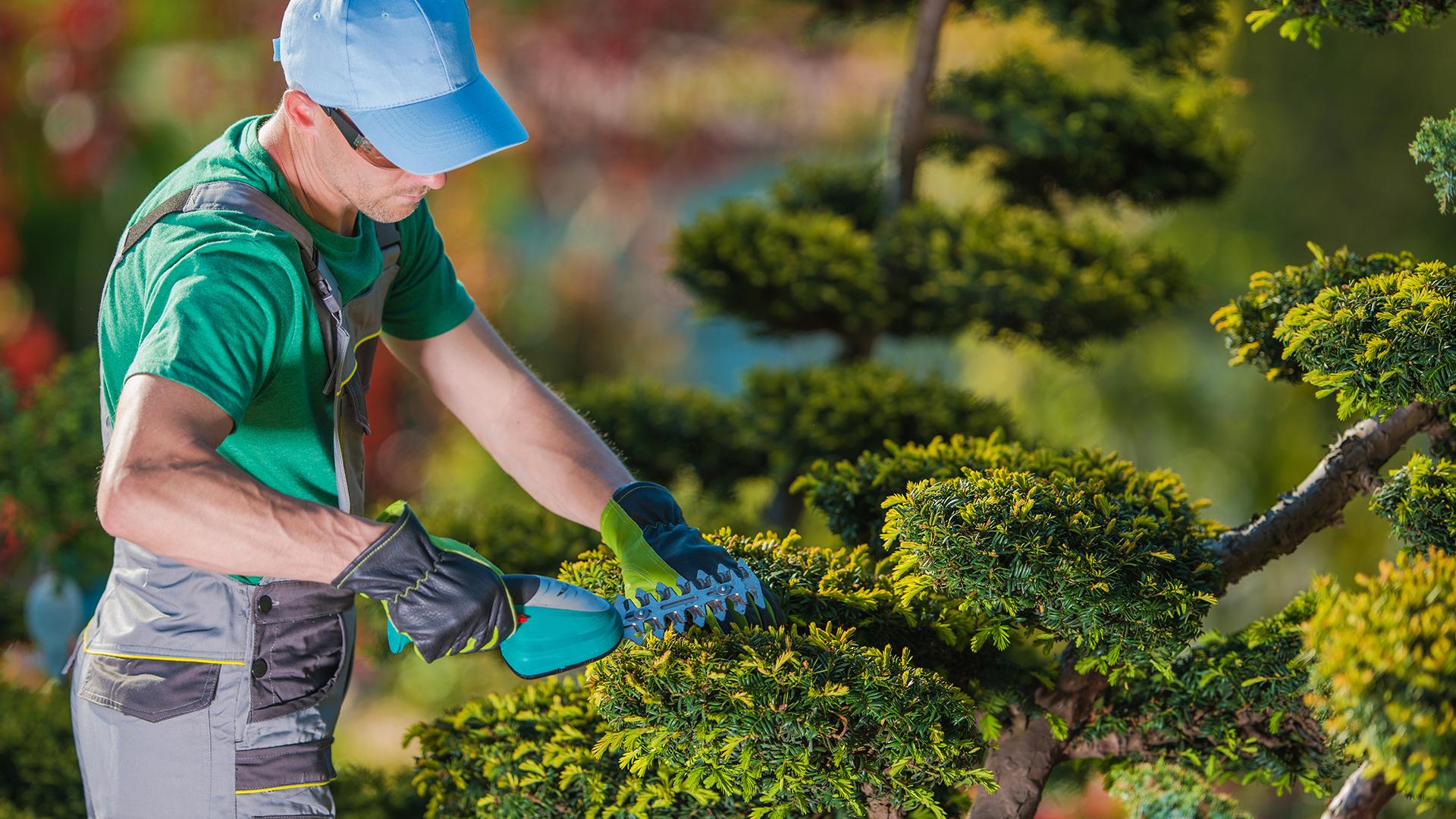 Jardinagem nas empresas